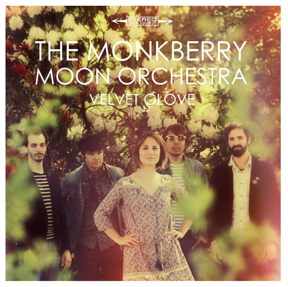 monkberry velvet