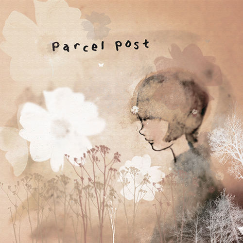 1038 parcel post centimetres